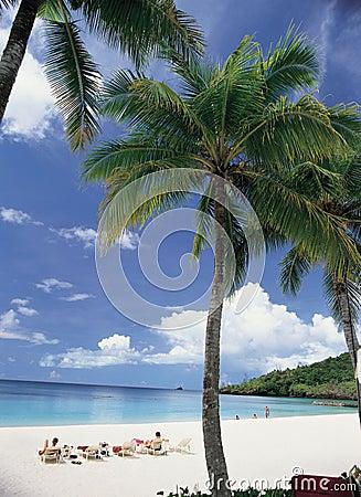 Free Beach Stock Image - 83791