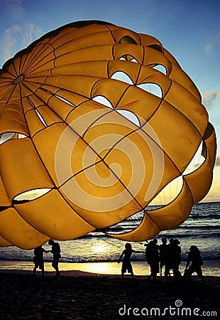 Beach activity Editorial Stock Image