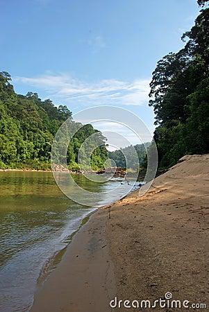 Beach along the river in Taman Negara, Malaysia