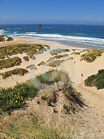Free Beach And Sand Dunes Royalty Free Stock Images - 37122629
