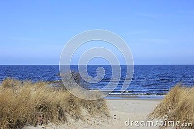 Beach on the Baltic Sea