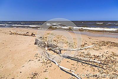Beach of the Baltic Sea in Sobieszewo