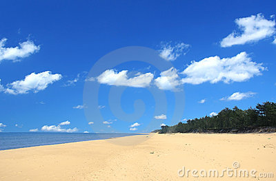 Beach with beautiful cumulus