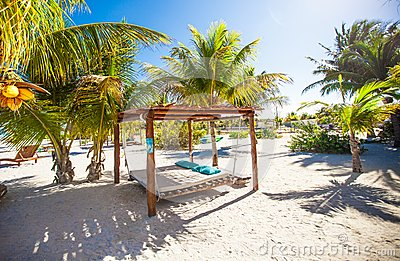 Beach beds and hammocks among palm trees at