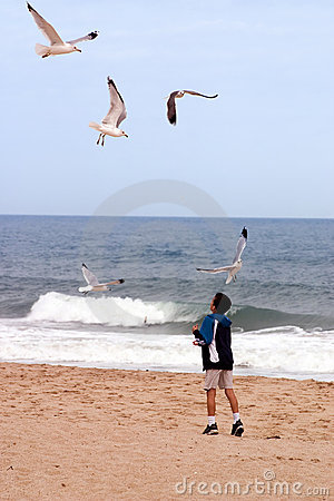 Beach Boy and Birds