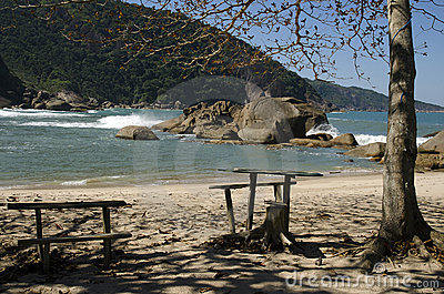 Beach. Brazil
