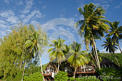 Beach bungalow in tropical pacific ocean Island. Editorial Image