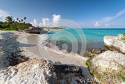 Beach of the Caribbean Sea in Mexico