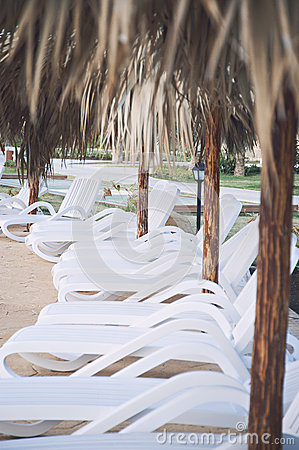 Beach Chairs ready for sun bathing