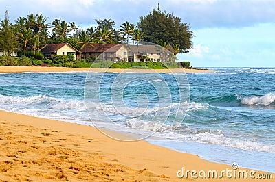 Beach condos