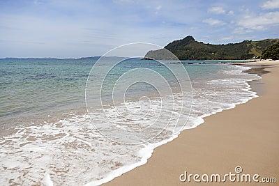 Beach at Coromandel