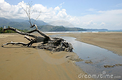 A beach in Costa Rica