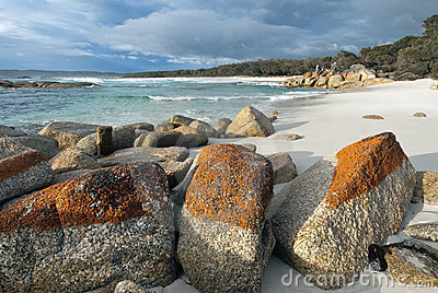 Beach at Cosy Corner