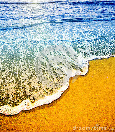 Free Beach Detai Stock Photos - 28761443