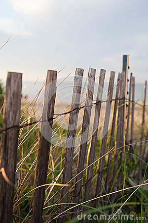 Beach dunes fence