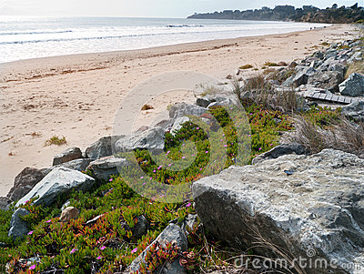 Beach front with ice flowers and rocks.