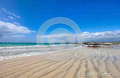 Beach on Galapagos Isabela island, Ecuador