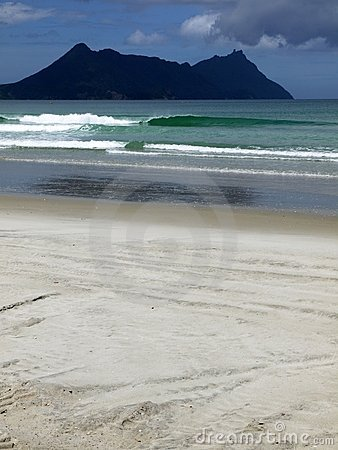 Beach: green wave
