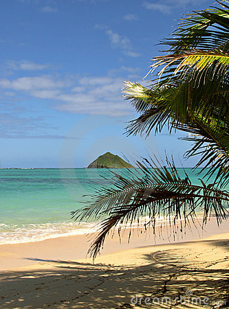 Beach on Hawaii
