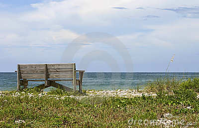 Beach at Honeymoon Island, Florida 2