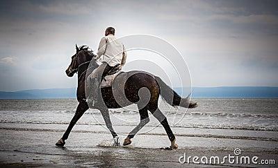 Beach horse rider