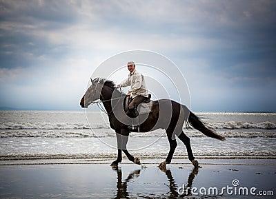 Beach horse rider silhouette
