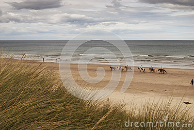 Beach horse riding Editorial Image