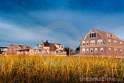 Beach houses behind dunes