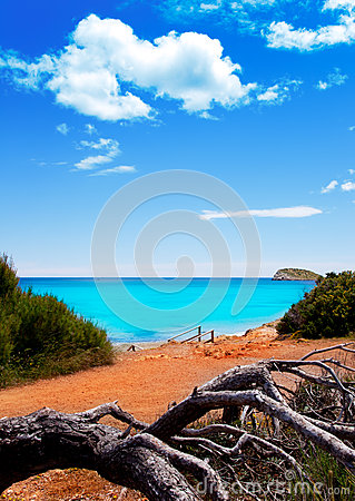 Beach in Ibiza island with turquoise water