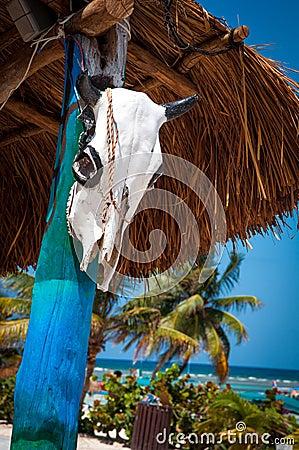 Free Beach In Costa Maya Stock Photo - 40645720