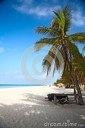 Beach on the Isla Mujeres