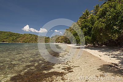Beach on island. Philippines