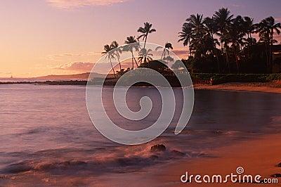 Beach at Kauai, HI
