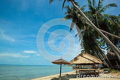 Beach in Koh Phangan Thailand