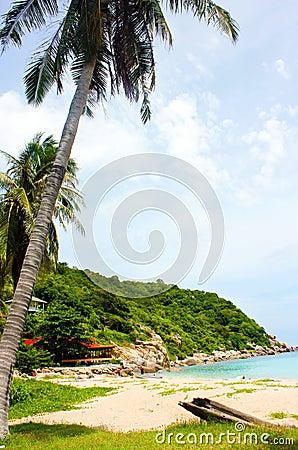 Beach Koh Tao Thailand