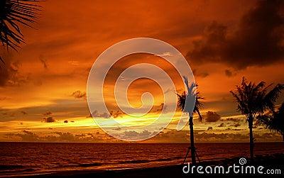 Beach in Krabi. Sunset