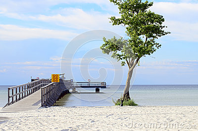 Beach of Öland