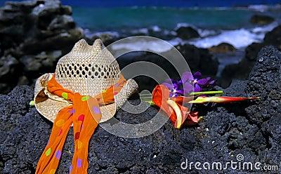 Beach of Lava Rock
