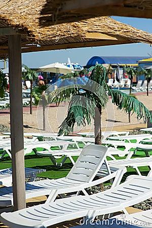 Beach loungers on tropical resort