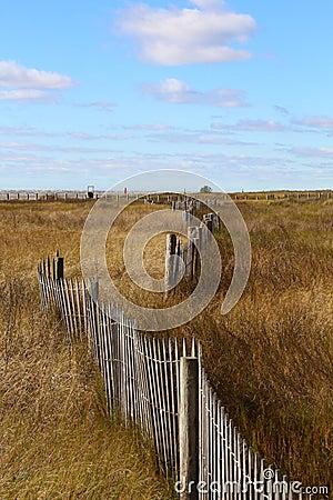 Free Beach Meadow Dune Fence Stock Photo - 64301970