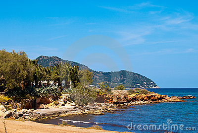 Beach of Mediterranean Sea under clear blue sky