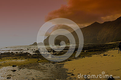 Beach Beside Mountain During Daytime Free Public Domain Cc0 Image