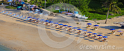 Beach near tropical sea with umbrellas