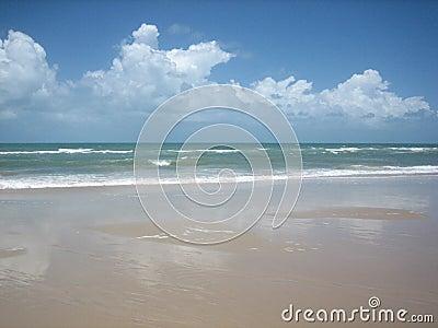 Beach of north Brasil