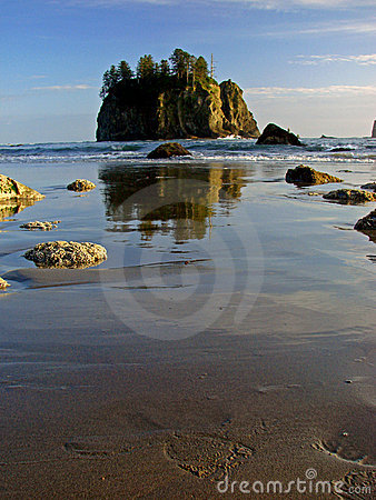 Beach, Olympic National Park
