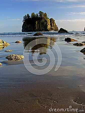Beach, Olympic National Park