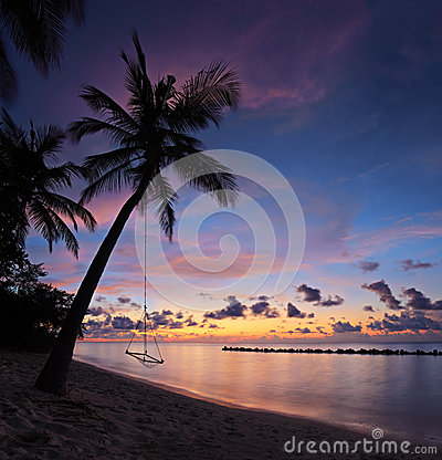 Beach with palm trees at sunset, Maldives island