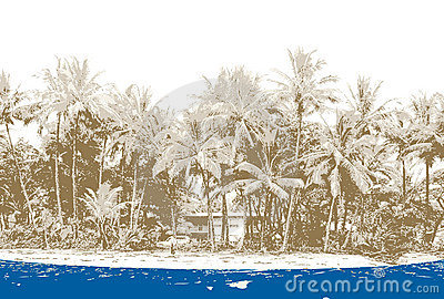 Beach with palms. Vector