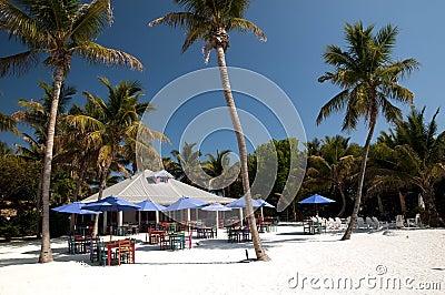 Beach on Paradise