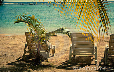 Beach paradize